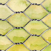 Chicken_Wire_S6_spoonflower
