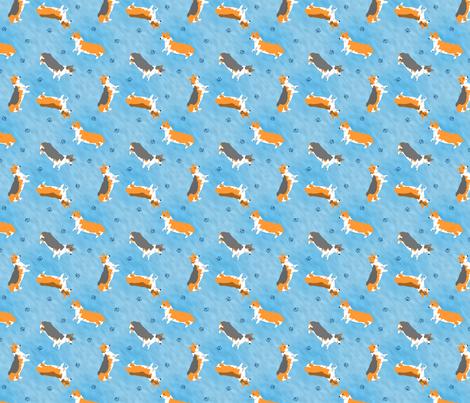 Tiny Pembrokes - blue