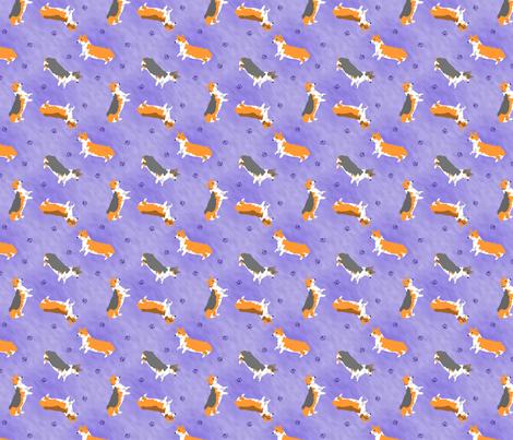 Tiny Pembrokes - purple