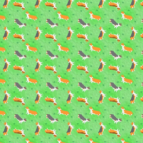 Tiny Pembrokes - green