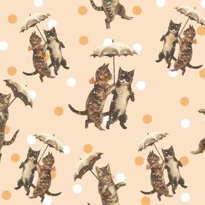 raining cats