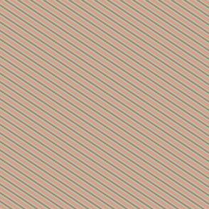 Turquoise Tangerine Peach Stripes