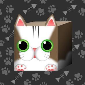 The Marvelous Cat Cube