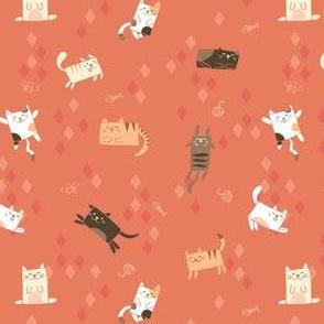 Cubie Cats