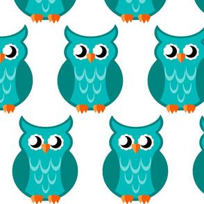 turquoise_owl_2