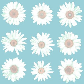crazy daisy on light blue