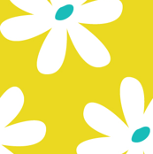 Daisy Chain Citron