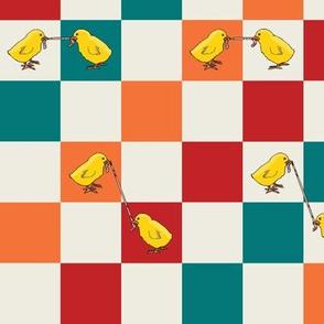 Checkered Chicks