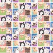pretty kitty squares
