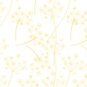 Wild Garden Queen Annes Lace Yellow