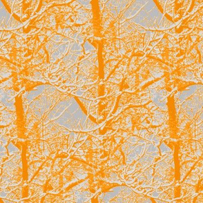 Orange and grey trees