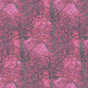 Magenta and Grey Trees