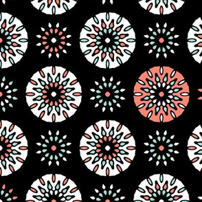 Celebrate Coral Fireworks