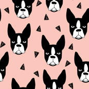 boston terrier // cute boston terriers pink girls sweet dog breed fabric