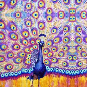 Radiant Peacock