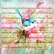 sweet birdie of spring