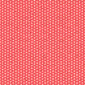 Flowergarden - red coordinate