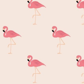 Flamingos on pink