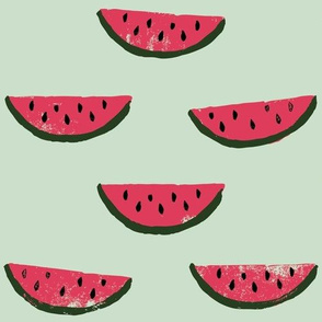 Watermelon Fabric on Green