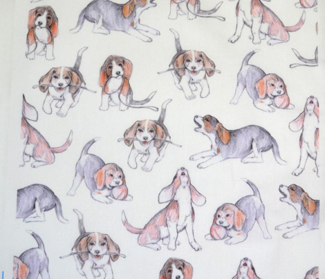 Beagle Pups on white REVISED