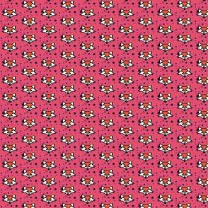Foxy Orange Stars Pink