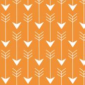Arrows in Orange