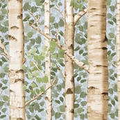 Birch Grove in Summer