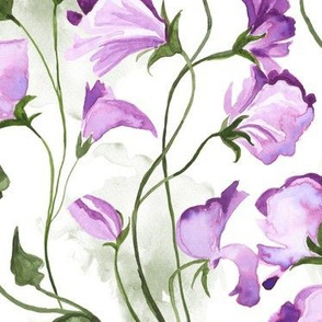 Sweet Pea Watercolor Floral