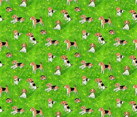 Beagles and Dandelions