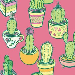 Cactus Garden in Pink