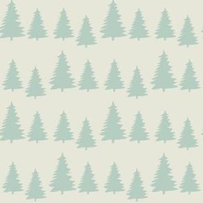little fir ©2015 Jill Bull
