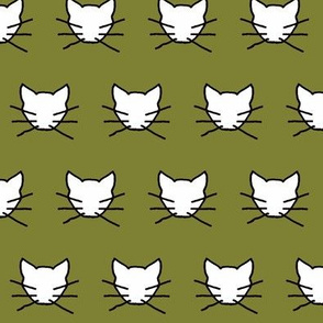 White cat on olive green