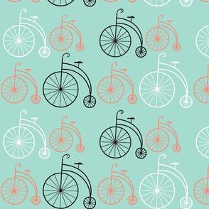 Bike Coral