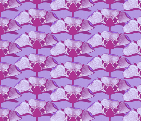 Fragaria Lavender