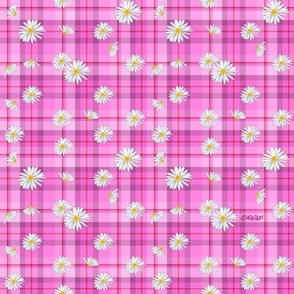 Pink Red Daisy Craze (SMALL)