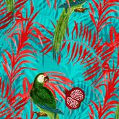 Tropical Parrots