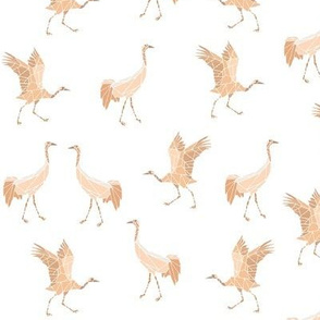 cranes coral