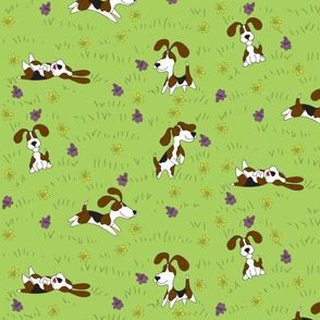 beaglefabric6x6