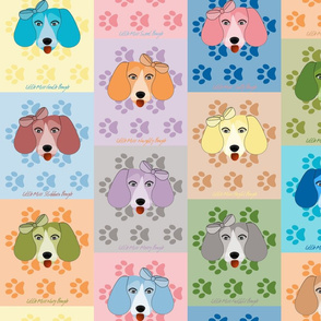 Colourful_Little_Miss_Beagle