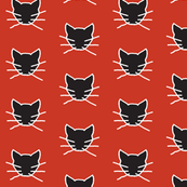 Dark gray cat on red