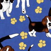 Pantone Puppies Classic Blue