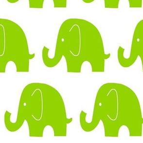 Jumbo Elephant Lime