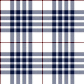 Buchanan dress blue (dance) tartan