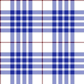 Buchanan dress blue tartan