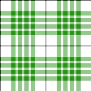 Buchanan dress green tartan