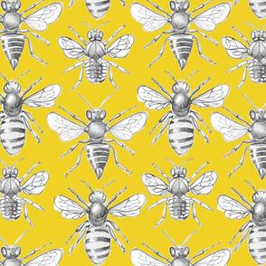 British Bees - Mustard