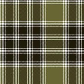 MacDonald Lord of the Isles weathered tartan