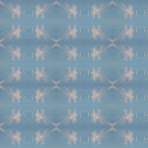 mirrored image of pegasus cloud