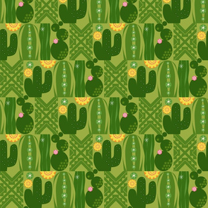 Southwest CactusGarden_Cactus Med
