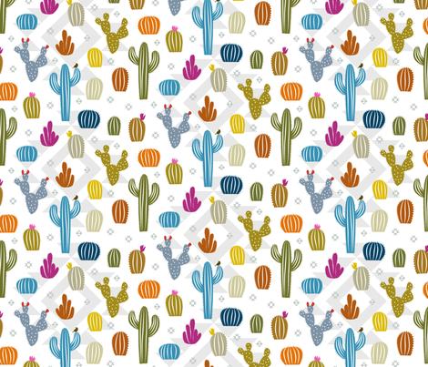 Cactus Cuteness